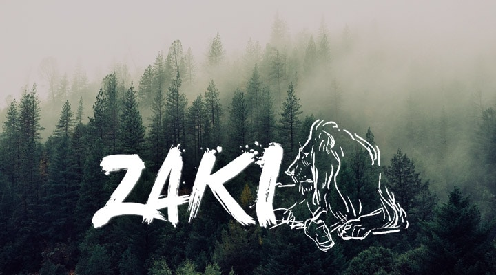 ZAKI FRANCE, partenaire de FSI FRANSKAN